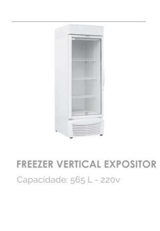 Freezer Vertical Expositor