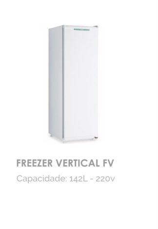 Freezer Vertical FV